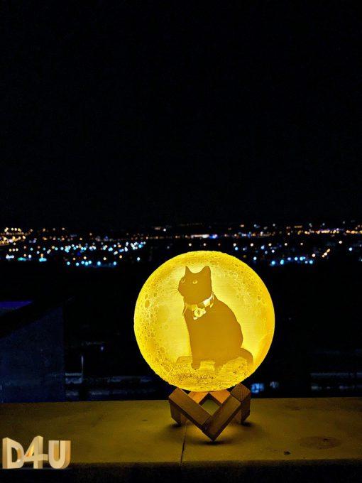מתנות מנורת לילה תלת מימד בהקדשה אישית-2