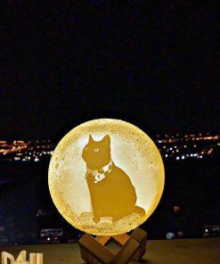 מתנות מנורת לילה תלת מימד בהקדשה אישית-4
